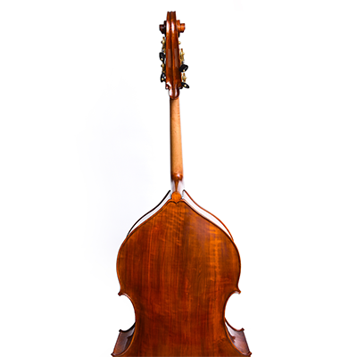 Cosimo Fischetti Double Bass, Back
