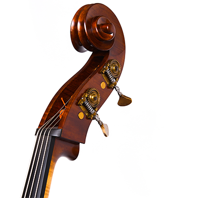 Guido Mariotto Double Bass 2018, Scroll Close Up