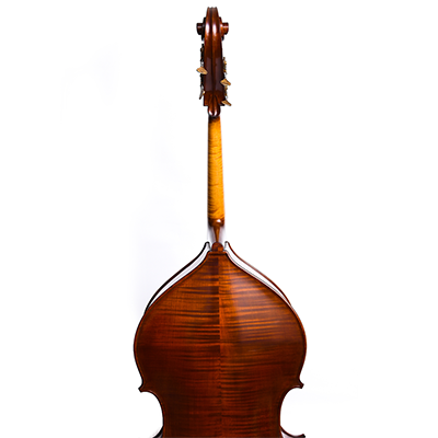 Guido Mariotto Double Bass 2018, Back