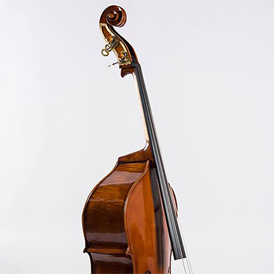 Roberto Salvianti Double Bass 2018, Front