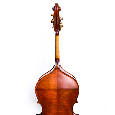 Roberto Salvianti Double Bass 2017, Back