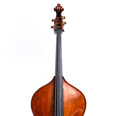 Roberto Salvianti Double Bass 2017, Front