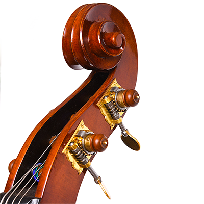 Roberto Salvianti Double Bass 2017, Scroll Close Up